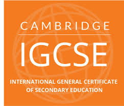 educazioneglobale licei IGCSE
